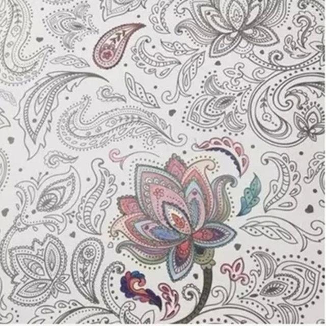 Korea 128 Pages Mandalas Coloring Book 12 Color Pencils For Adults Relieve Stress Secret Garden Art Books