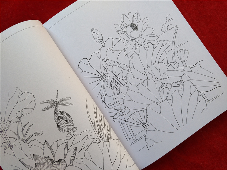 Image 3 - new Chinese painting line drawing book Color pencil Flower Birds and insect coloring book Engraving pattern for beginner-in Books from Office & School Supplies