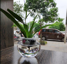 1set,Plastic transparent hydroponic small vase flower pot, court gardening materials home furnishings office hotel mall