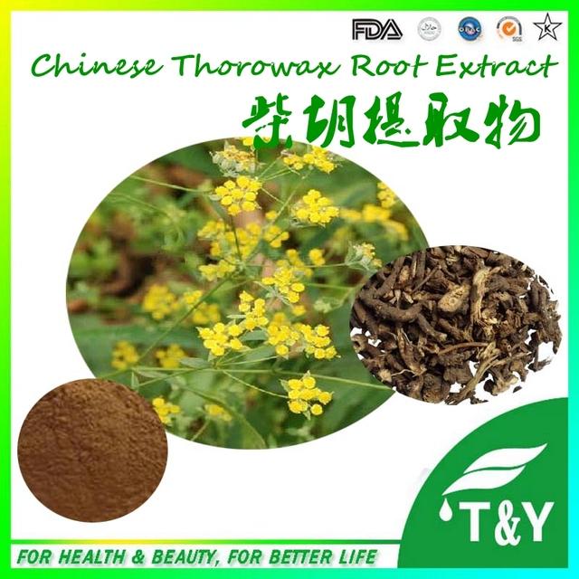 Fornecer 100% Natural Puro e Orgânico Chinês Thorowax Extrato Da Raiz de 100g