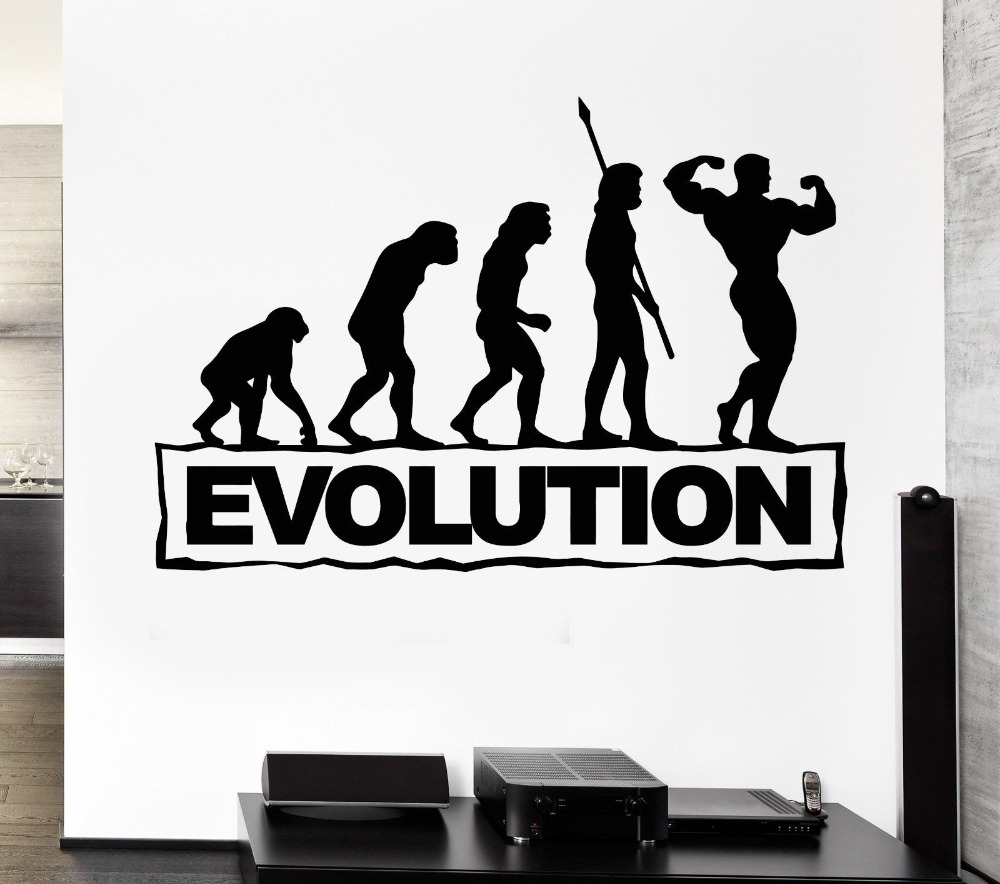 Sticker gym wall - Aliexpress Com Buy Free Shipping Evolution Gym Sports Wall Decal Bodybuilding Fitness Stickers Art Mural Home Decoration Wall Paper Diy Mural Y 30 From