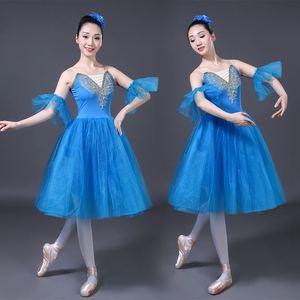Image 4 - Adulto Balletto Romantico Tutu del Pannello Esterno Pratica di Prova Swan Costume per Le Donne Abito Lungo In Tulle Bianco rosa blu di colore di Usura di Balletto