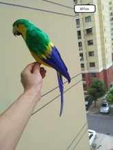 big real life green&yellow parrot model foam&feather simulation bird gift about 42cm xf0142