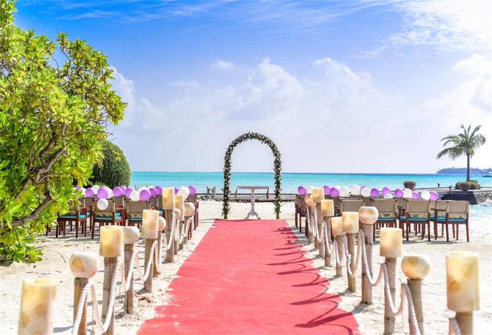 Laeacco Beach Wedding Ceremony Arch Scenic Photography Backgrounds Customized Photographic Backdrops For Photo Studio in Background from Consumer Electronics