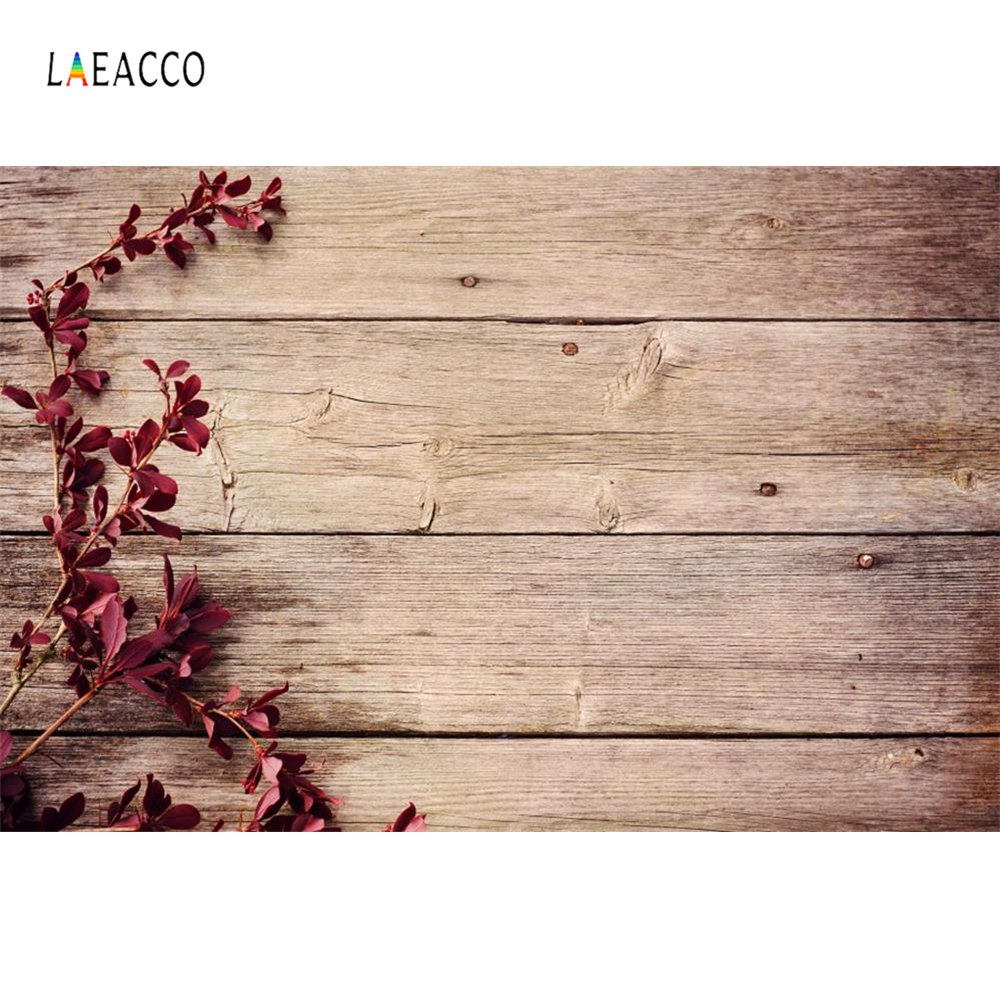 Laeacco Planks Vine Petal Wooden Board Pet Food Child Portrait Photo Backgrounds Photographic Backdrop Photocall Photo Studio in Background from Consumer Electronics