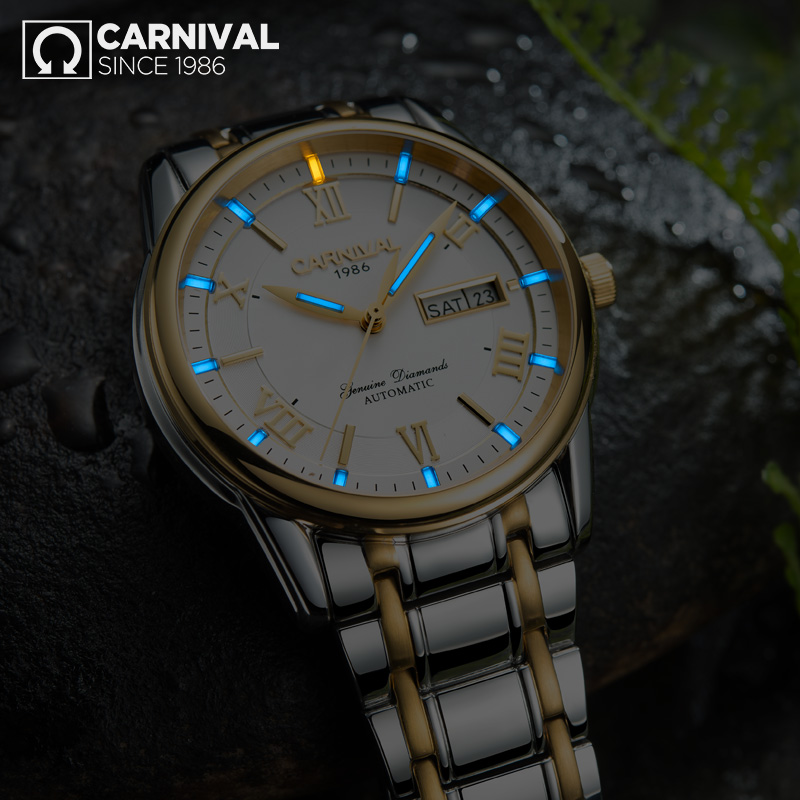 Carnival T25 Tritium Automatic Watch Men Luminous Mechanical Watches Business Mens Clock Stainless Steel Wristwatch reloj