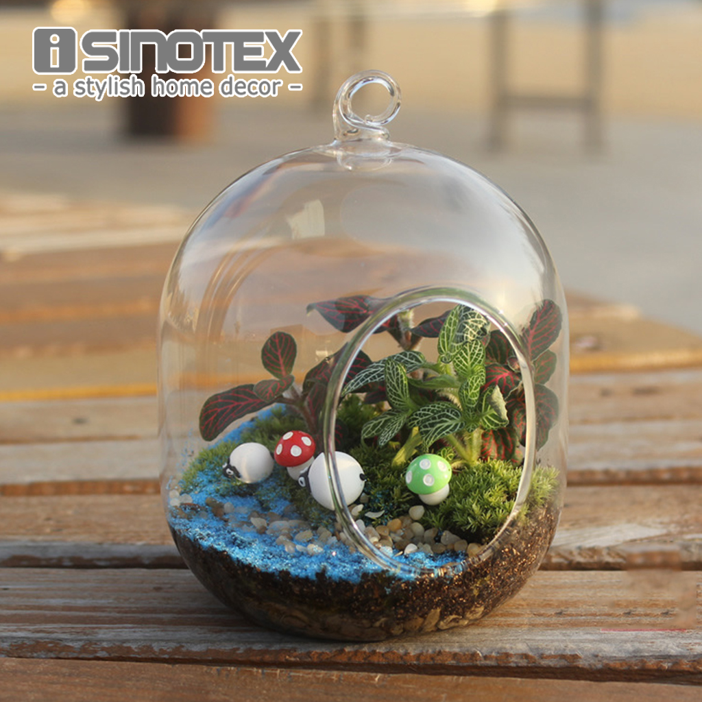 Hanging Glass Vase Diy Planting Hydroponic Flower Spherical Container Garden Terrarium Home