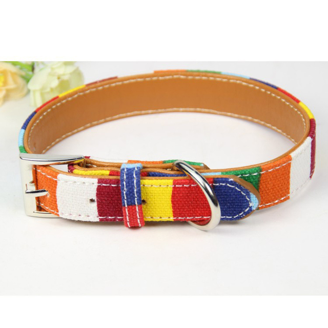 Pet Dog Designer perro Collar