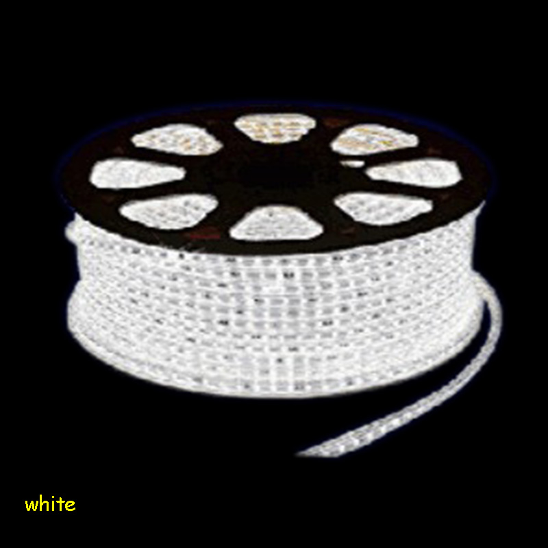 EU Plug 3014 LED Strip Light 220 V Waterproof 1to100m 220V Ribbon Tape Lamp Stripe Warm