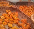 300g Tremella Bandoni aurantialba et Zang a partir de extrato de erva Chinesa material & especial para comida Chinesa & Saúde alimentar material