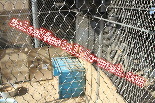 Zoo tier vogel kabel drahtgeflecht fechten gehäuse in Zoo tier vogel ...