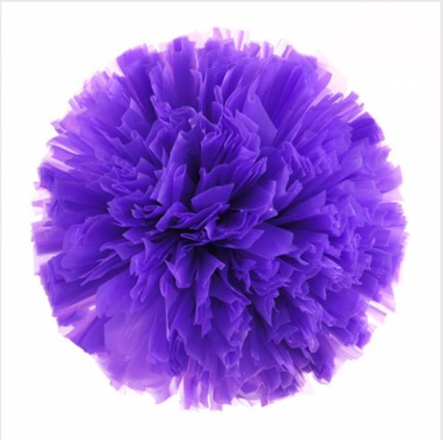 Purple Small cheer pom poms 5c64fbbde3f95