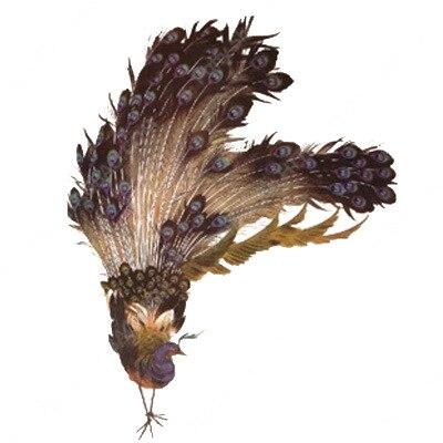 temporária peônia ameixa flor de lótus lobo
