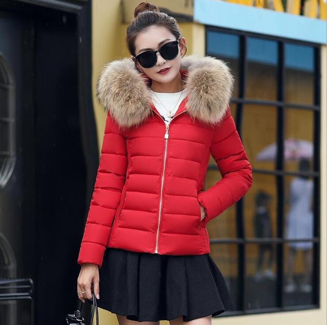 2018 Vrouwelijke Jas Herfst Met Bontkraag Capuchon Katoenen Gewatteerde Winterjas Vrouwen Korte Uitloper Basic Jacket 5