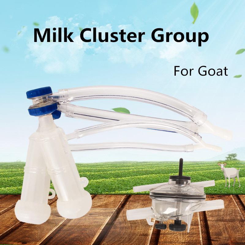 Goat Milking Cluster Group with Milk Claw for Milking Machine Parts M08