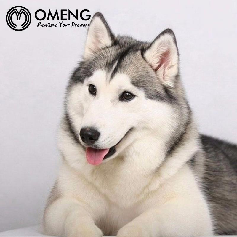 Omeng Anjing Liontin Kalung Alaska Anjing Kalung Untuk Semua Anjing Siberian Husky Oxl365 Pendant Necklace Dog Pendant Necklacedog Necklace Aliexpress
