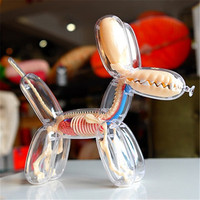 26parts 4d Big Balloon Dog Transparent Skeleton Model Perspective Bone Anatomy Puzzle Assembling Veterinary Toy