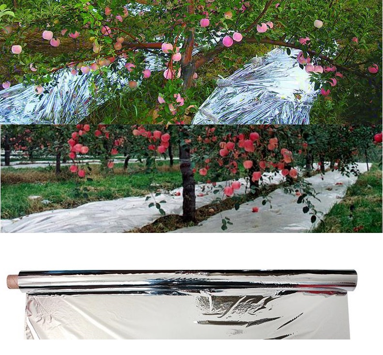 2Pcs Silver Reflective Mylar Film,Garden Greenhouse Covering Foil Sheet Two-Sided Reflective Mylar Film for Grow Room Garden Greenhouse