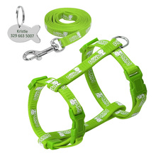 Nylon Cat Harness and Leash Set With Customized Id Tag