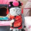 Chinese Princess Cosplay Costume