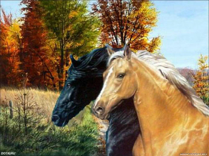 DIY Diamond Painting cross stitch Scenery Diamond puzzle Crafts Full Diamond Embroidery animal horses picture pastes Home Decor