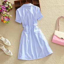 Elegant Office Summer Dress