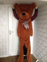 High Quality Low Price Plush Toys Large Size250cm Teddy Bear 2 5m Big Embrace Bear Doll