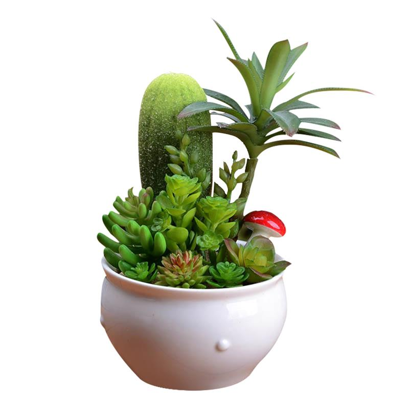 Creative Artificial Cactus Plant Decorative White Ceramic Pot Fake Succulents Lifelike Plants For Desk Ornaments