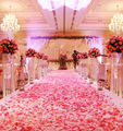 2000pcs Fashion Atificial Polyester Flowers for Romantic Wedding Decorations Silk Rose Petals confetti