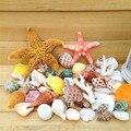 Um grande pacote de concha conchas coral decoração estrelas do mar aquário plataforma de design de estilo mediterrâneo decoração do casamento