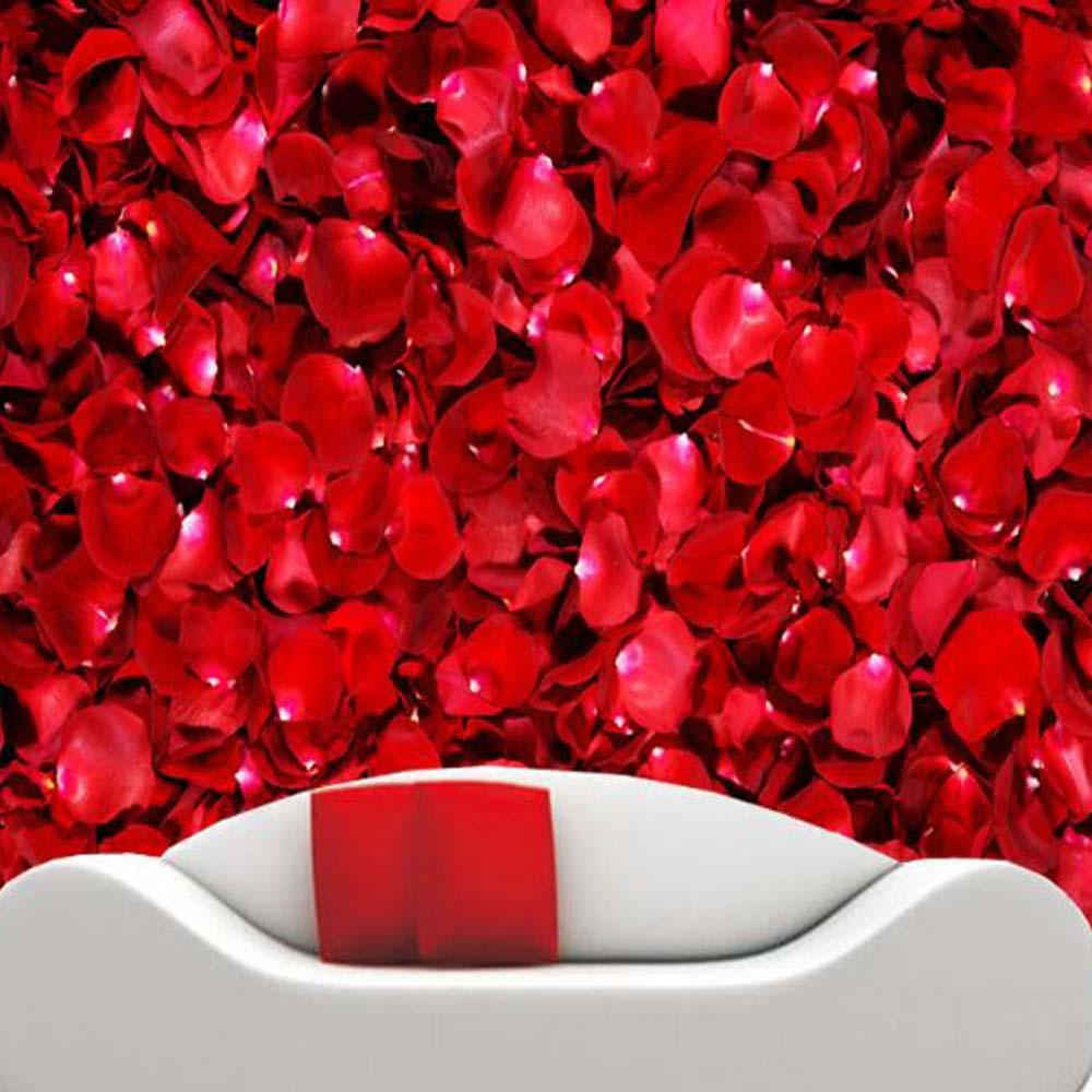 Detail Feedback Questions About 3d Customized Size Red Rose Wall