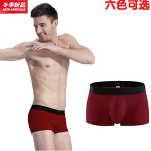 Men's underwear cotton pants waist sexy young pure cotton cotton pants four angle head wine red underwear