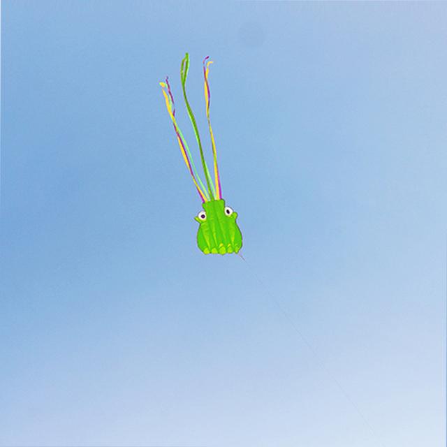 5.5 m 3D Kite Única Linha Conluio Parafoil Octopus Forma Esporte Pipas com 30 m Fio Fácil de Voar