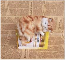WYZHY simulation cat Home decoration creative desktop decorations photo photography props to send friends gifts  26cmX15CMX18CM wyzhy simulation cat home decoration creative desktop decorations photo photography props to send friends gifts 14cm x11cm