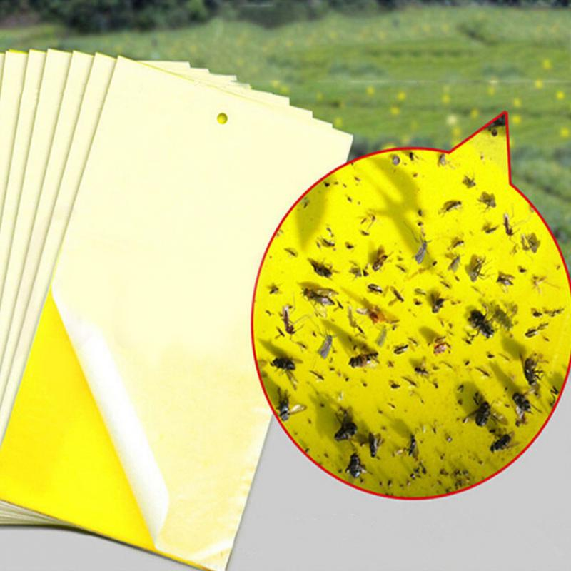 5 Pos Double Sided Traps Strong Insecticide Bait Insect Sticky Yellow Plate Trap Board Bait Plate Flies Cockroaches 45