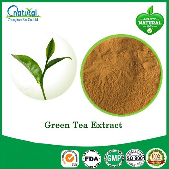 5packs High Quality Green Tea Extract 400mg x 500caps for weight management 3g 10pcs high quality green tea jasmine tea new flowers jasmine flower tea green health food scented tea free shipping