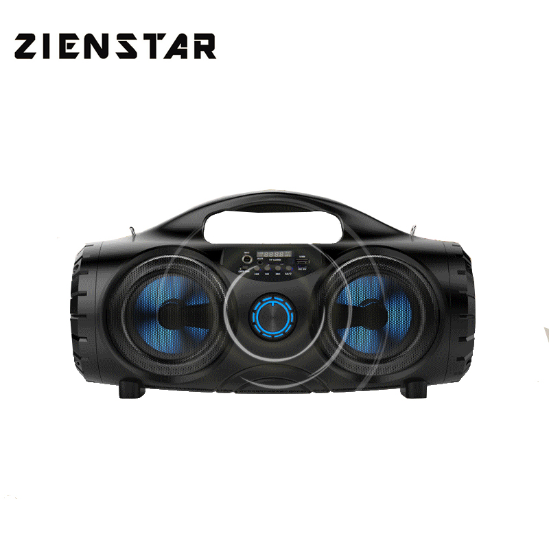 ZIENSTAR 10W Wireless Bluetooth Sports Speaker Portable Outdoor Subwoofer with handle Support TF USB card FM