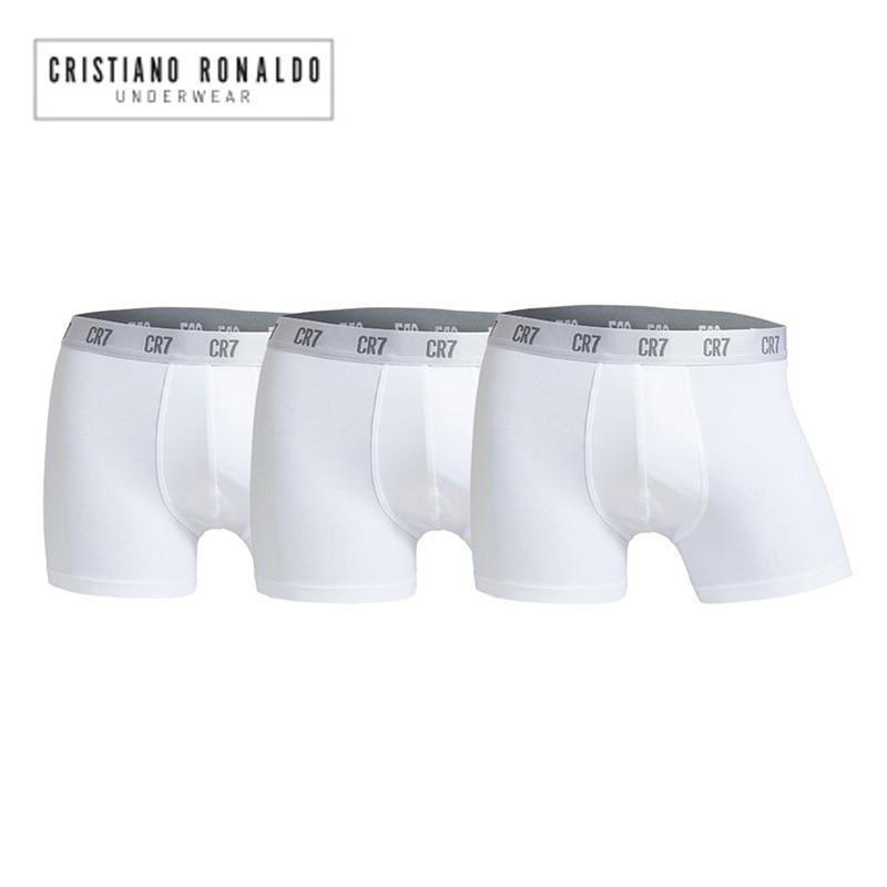 Pullin Master Sagrado Underwear in Sagrado