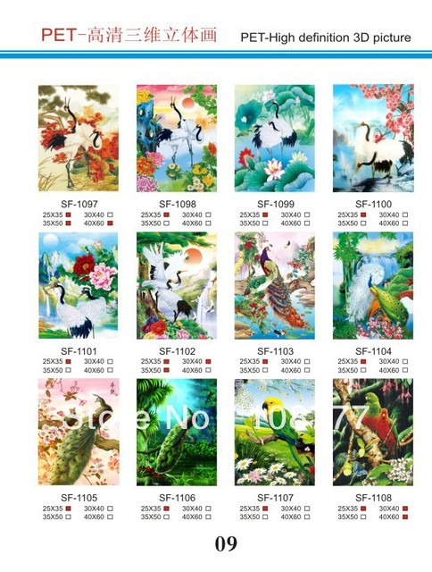 HD 3D stereoscopic paintings/3D picture/size30*40/Retail orwholesale /1108parrot