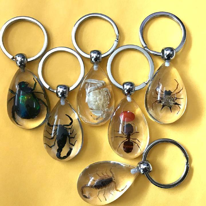 12pc wholesale insect jewelry golden scorpion mix drop style key-chains