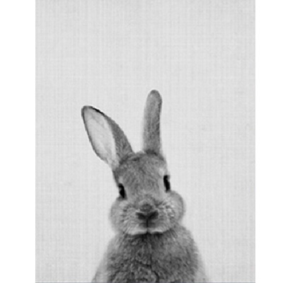 Front or back rabbit sold seperately canvas painting black white animal poster print nordic wall art picture home decor unframed in painting calligraphy