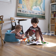 Electronic Dino Robot Light Up Walking Toy Mist Spray Dinosaur with Sound