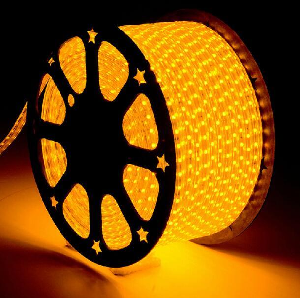 LED bande lumière AC 220 V SMD 5050 Flexible LED bande 60 LED s/m ruban pour salon 60 m 70 m 80 m 90 m 100 m - 2