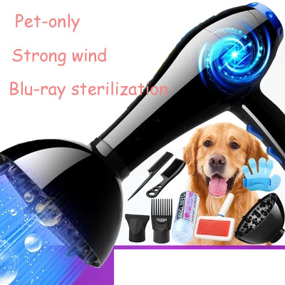 Pet Hair Dryer Dog Special High Power Dog Blow Dry Blowing Bath Artifact Dryer Water Blowing Machine