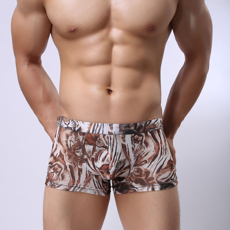 sexy underwear men Transparent shorts gay wear underpants gauze boxer shorts Mesh see through men boxers size XXL