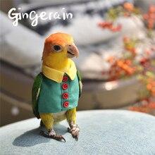 Gingerain одежда с птицами попугай одежда кнопка рубашка оригинальная ручная работа на заказ одежда с птицами пуговица рубашка