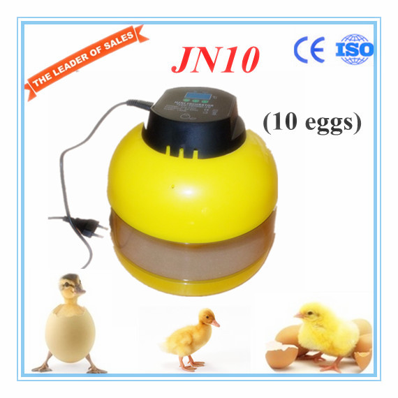 CE approved capacity 10 chicken eggs incubator for sale JN10 with high quality 3pcs unisex hats cap beanies for men