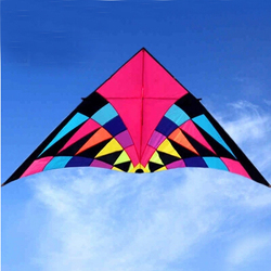 Envío Gratis 2,5 m arco iris grande cometa seductora de nylon ripstop juguetes cometa línea dragón cometa windsock parapente cometa aves