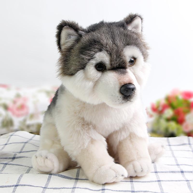 Detail Feedback Questions About Cute Cuddly Lifelike Wolf Soft