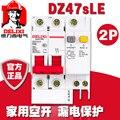 Автоматический выключатель DELIXI RCBO RCD 2P DZ47LE DZ47sLE 2P 6A 10A 16A 20A 25A 32A 40A 50A 63A 100A 125A